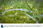 SNWA Summer Watering Schedule in Boulder City, Nevada