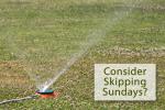 Skip Watering Sundays in Boulder City, Nevada