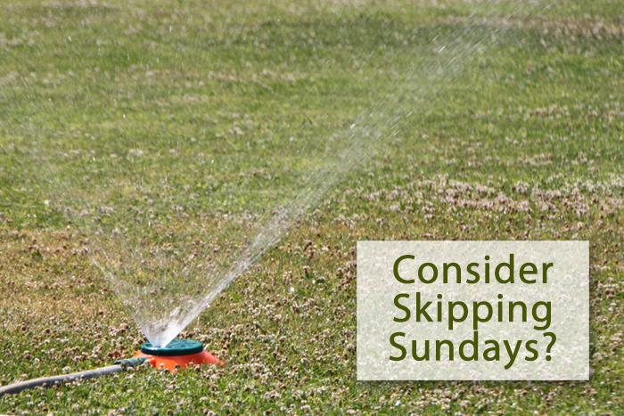 SNWA Suggests We Skip Sunday Watering