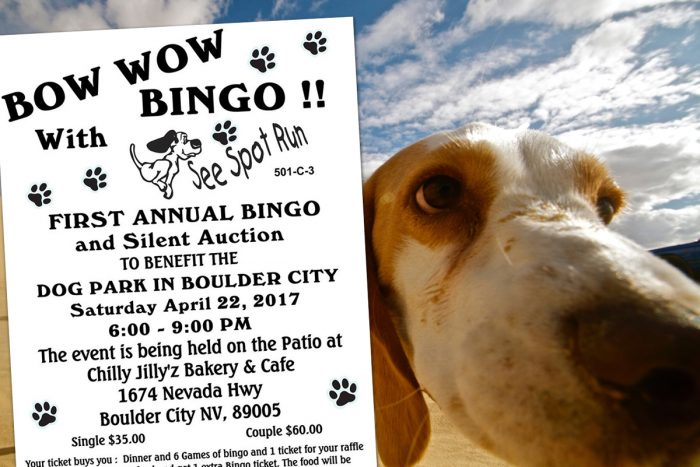 Bow Wow Bingo to Support See Spot Run & The BC Dog Park