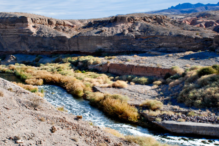 The Wetlands Trail in Lake Mead National Rec. Area Reopens!