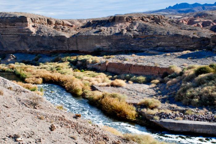 Wetlands Trail Lake Mead Boulder City, NV