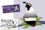 BCS Becomes BC.com Boulder City, NV