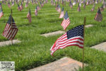 American Legion Flags Cemetery Boulder City, NV