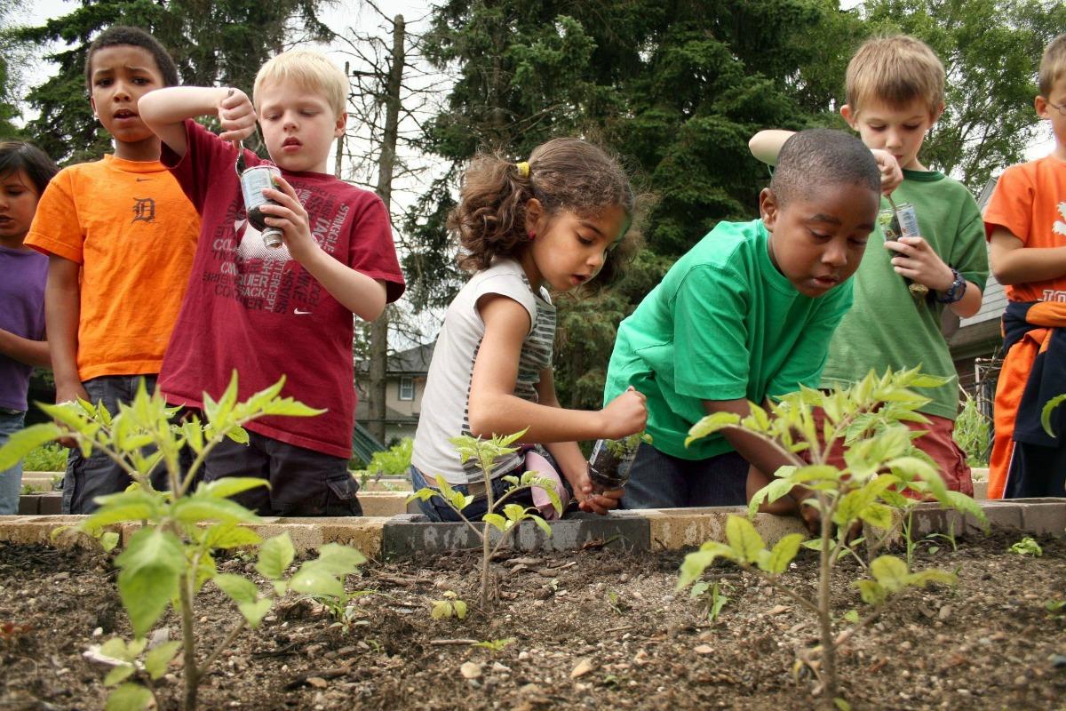 Volunteers Needed to Build New Community Gardens - Boulder