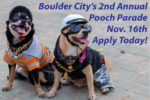 Pooch Parade App Open Boulder City, Nevada