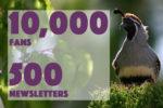 10,000 Fans Newsletters Giveaway Boulder City, Nevada