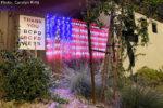 Fan Photo Carolyn King Boulder City, Nevada