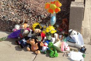 1313 Esther St. in Boulder City, NV