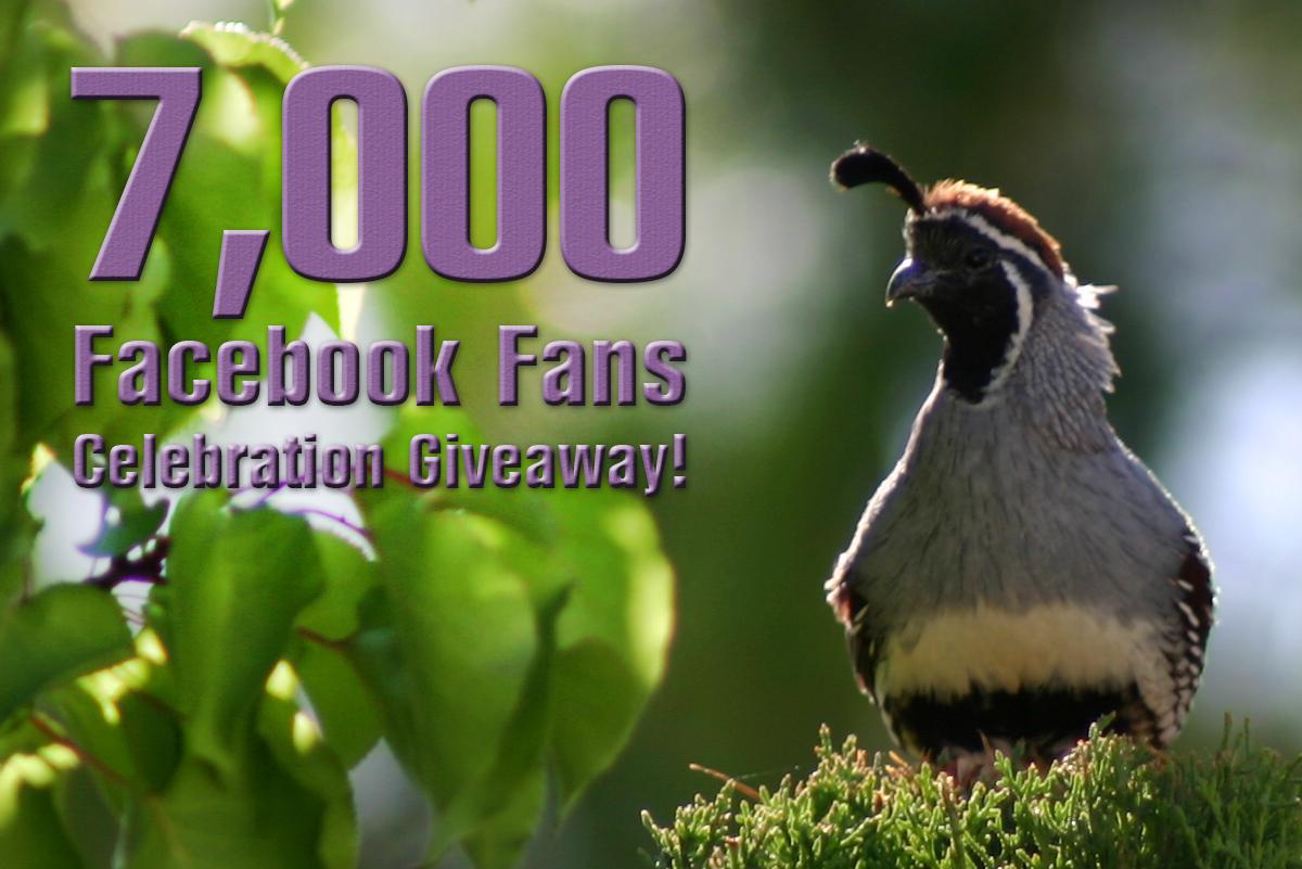 7000 Boulder City Social Facebook Fans Giveaway