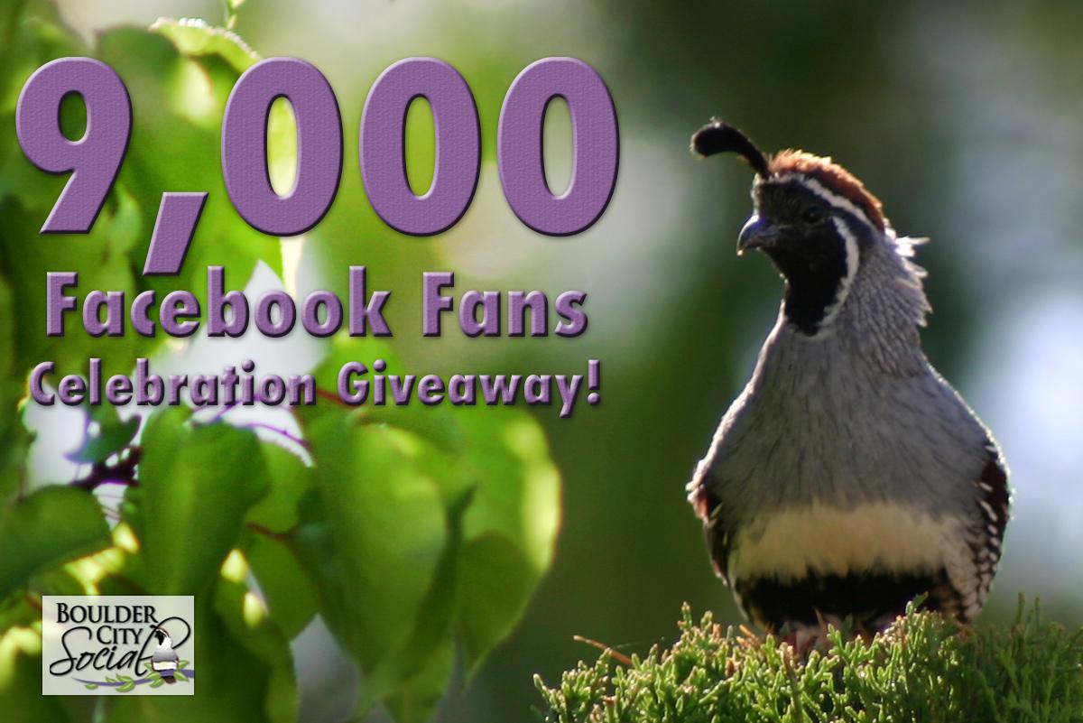 9000 Facebook Fans Giveaway Boulder City, Nevada