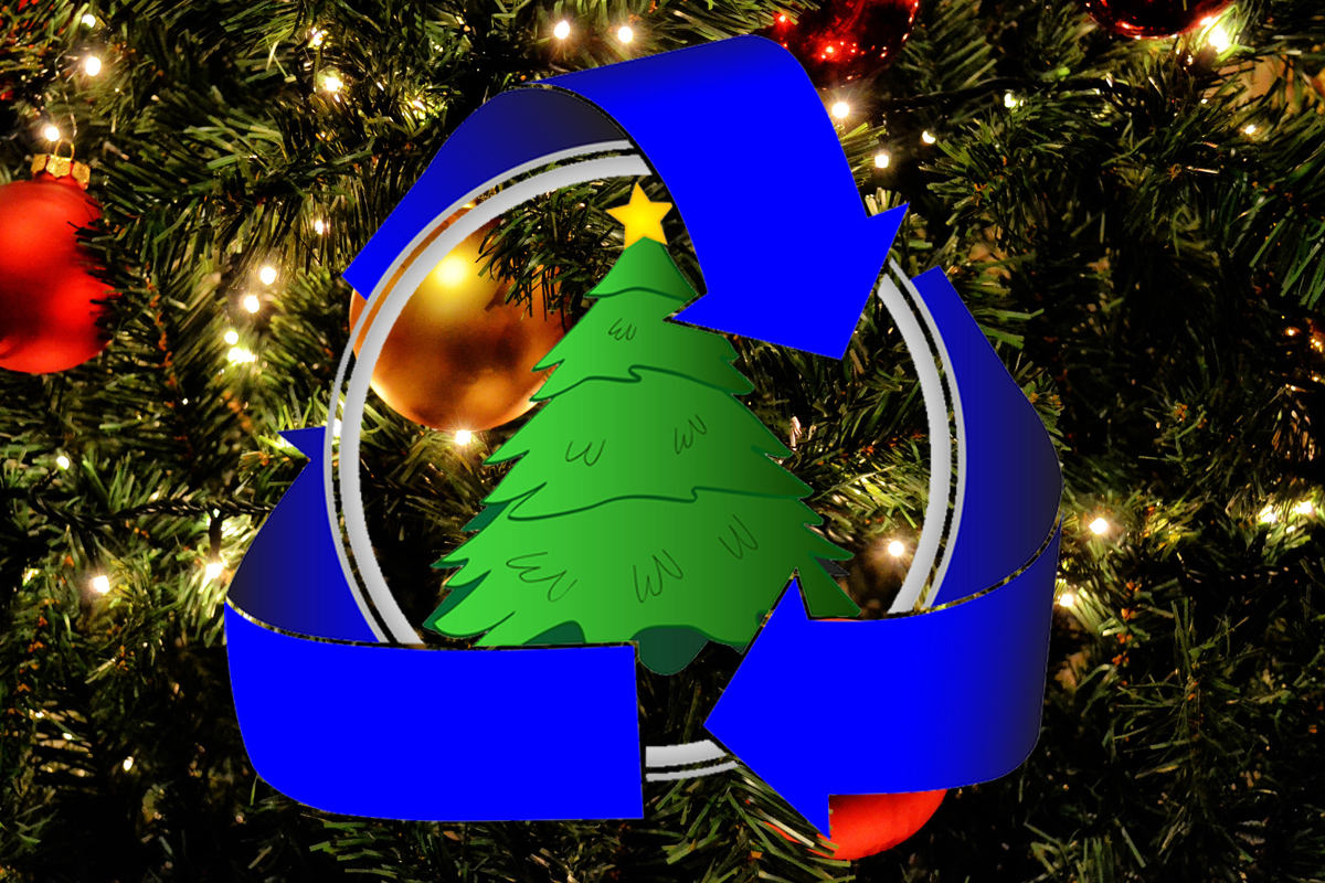 Christmas Tree Recycling Boulder City, Nevada