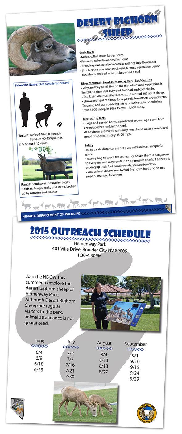 Bighorn Sheep Outreach Program in Boulder City, Nevada