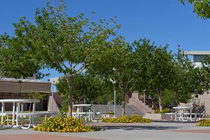 Boulder City High School in Boulder City, Nevada
