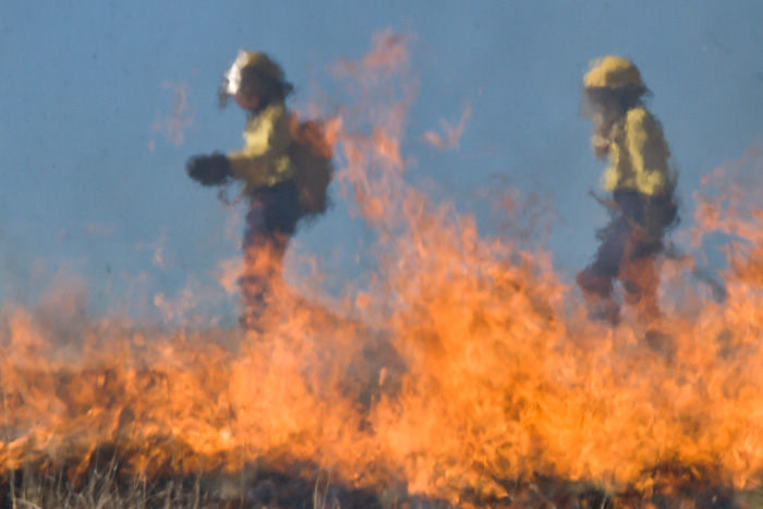 Controlled Fire Burn near Boulder City, Nevada