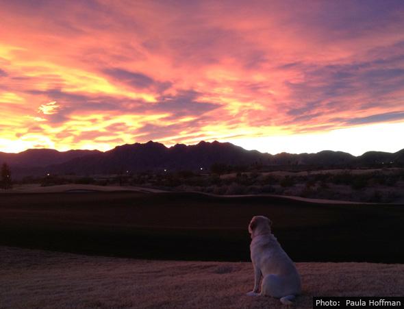 Fan Photo Paula Hoffman Sunset in Boulder City, NV