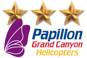 Papillon Gold Stars in Boulder City, NV