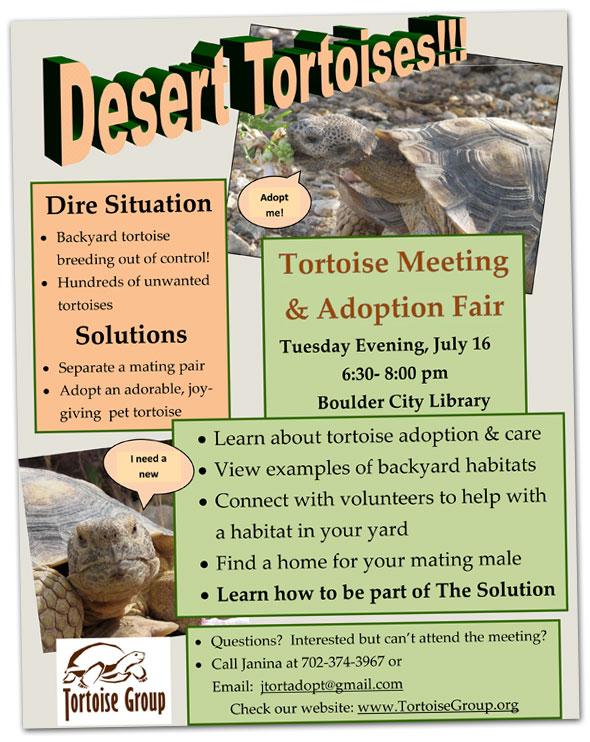 Desert Tortoise Meeting and Adoption Fair in Boulder City, Nevada