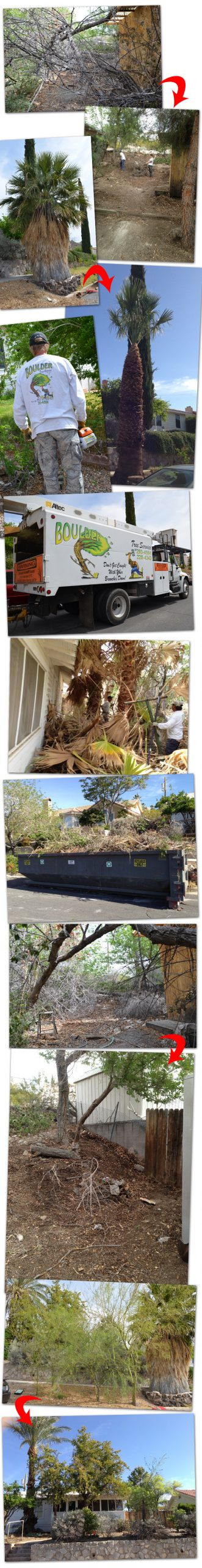 Yard Cleanup 2013 in Boulder City, Nevada