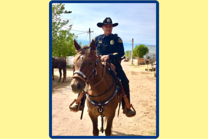 Boulder City Mounted Patrol Adds New Mustang